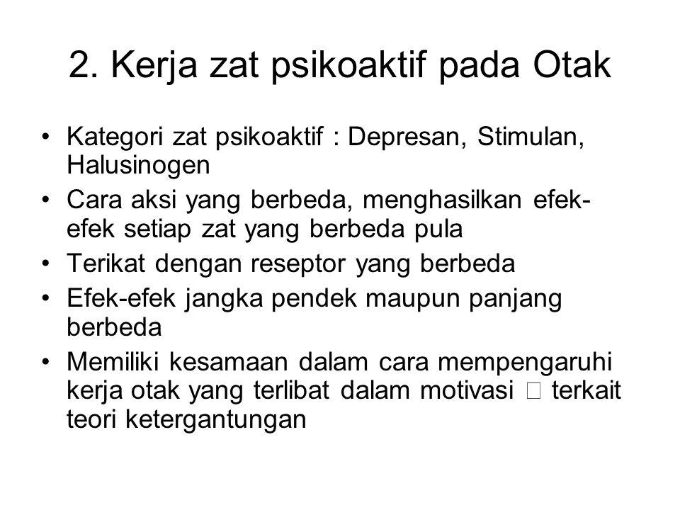 2. Kerja zat psikoaktif pada Otak Kategori zat psikoaktif : Depresan, Stimulan, Halusinogen Cara aksi yang berbeda, menghasilkan efek- efek setiap zat