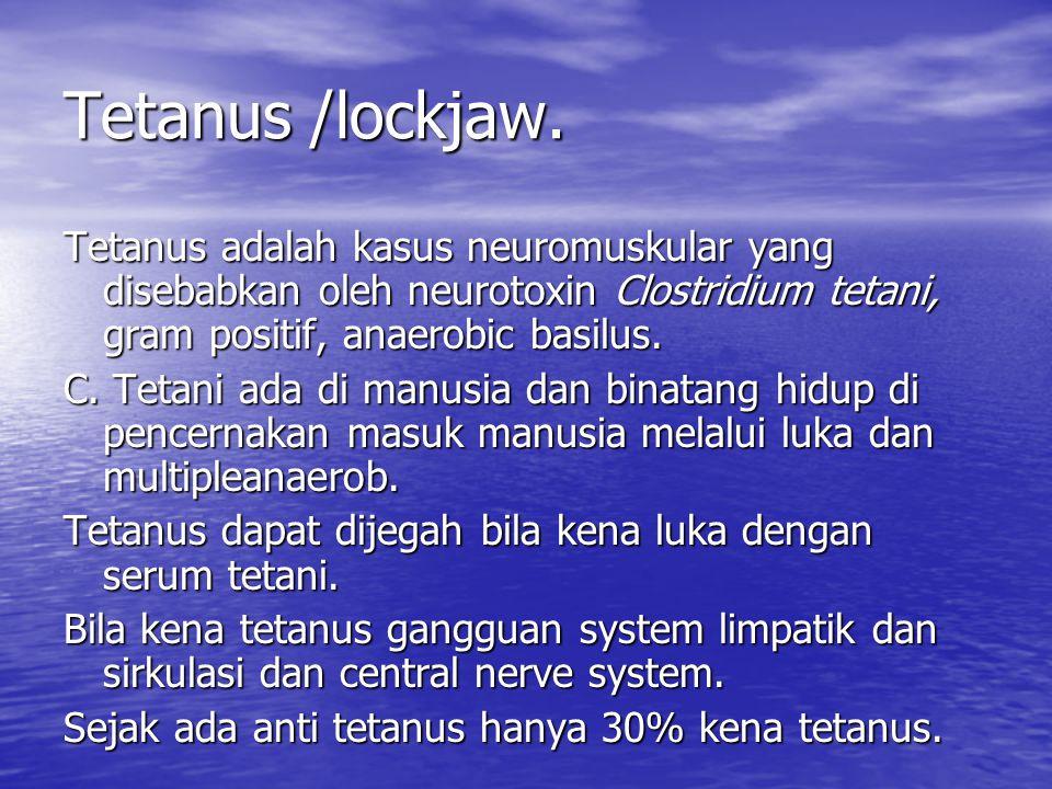 Tetanus /lockjaw. Tetanus adalah kasus neuromuskular yang disebabkan oleh neurotoxin Clostridium tetani, gram positif, anaerobic basilus. C. Tetani ad