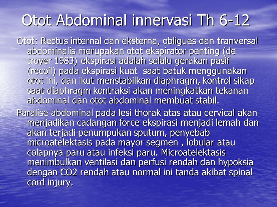 Otot Abdominal innervasi Th 6-12 Otot Abdominal innervasi Th 6-12 Otot: Rectus internal dan eksterna, obligues dan tranversal abdominalis merupakan ot