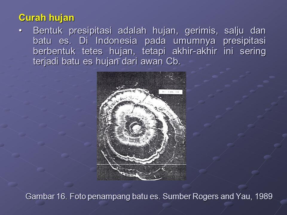 Curah hujan Bentuk presipitasi adalah hujan, gerimis, salju dan batu es. Di Indonesia pada umumnya presipitasi berbentuk tetes hujan, tetapi akhir-akh