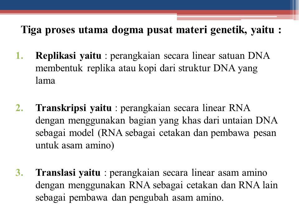 Tiga proses utama dogma pusat materi genetik, yaitu : 1.Replikasi yaitu : perangkaian secara linear satuan DNA membentuk replika atau kopi dari strukt