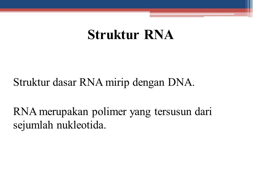 Struktur RNA Struktur dasar RNA mirip dengan DNA. RNA merupakan polimer yang tersusun dari sejumlah nukleotida.