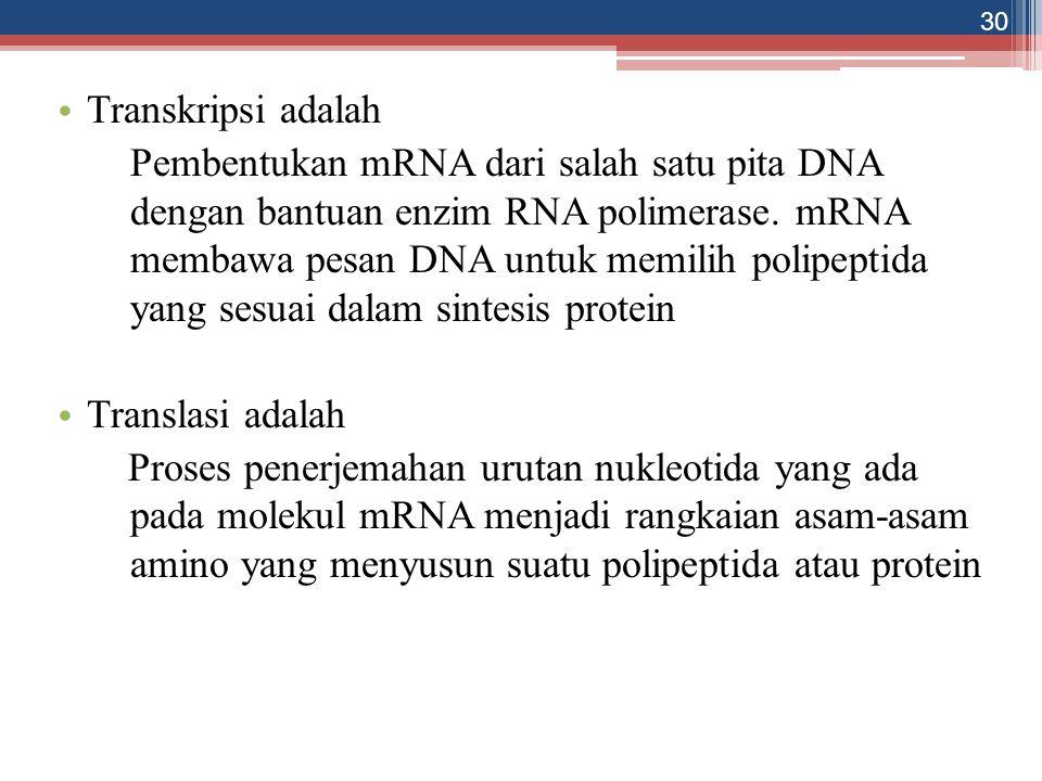 30 Transkripsi adalah Pembentukan mRNA dari salah satu pita DNA dengan bantuan enzim RNA polimerase. mRNA membawa pesan DNA untuk memilih polipeptida