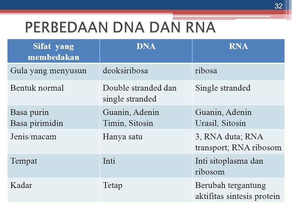 Sifat yang membedakan DNARNA Gula yang menyusundeoksiribosaribosa Bentuk normalDouble stranded dan single stranded Single stranded Basa purin Basa pir