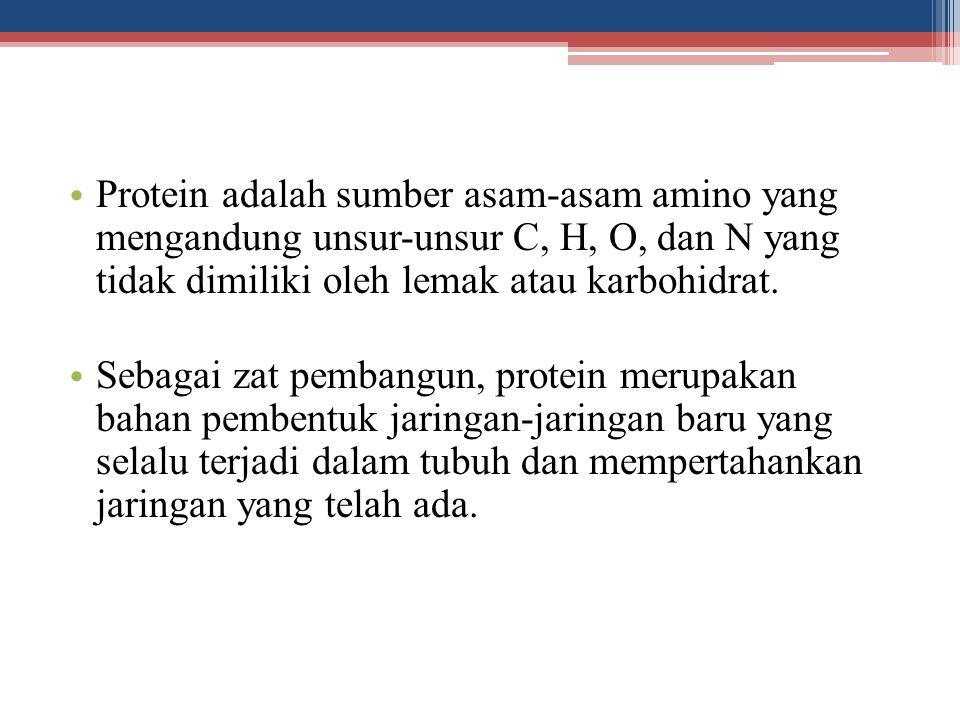 Protein adalah sumber asam-asam amino yang mengandung unsur-unsur C, H, O, dan N yang tidak dimiliki oleh lemak atau karbohidrat. Sebagai zat pembangu