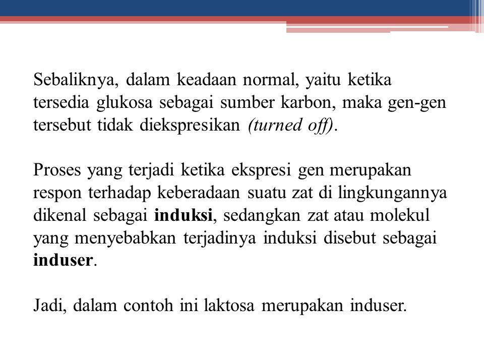 Sebaliknya, dalam keadaan normal, yaitu ketika tersedia glukosa sebagai sumber karbon, maka gen-gen tersebut tidak diekspresikan (turned off). Proses