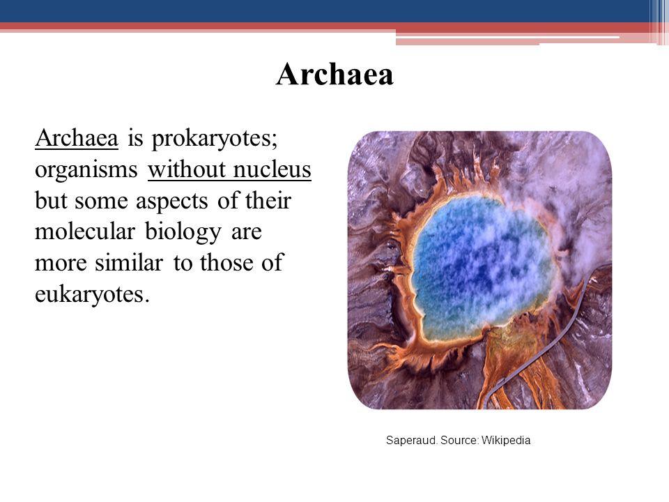 Materi Genetik (DNA dan RNA)