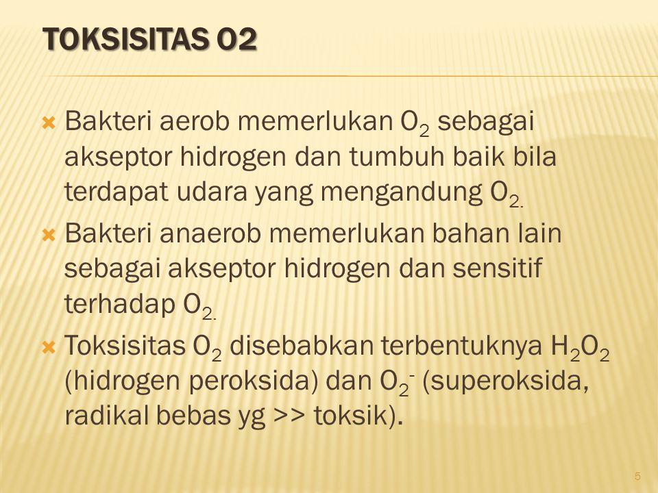 TOKSISITAS O2  Bakteri aerob memerlukan O 2 sebagai akseptor hidrogen dan tumbuh baik bila terdapat udara yang mengandung O 2.  Bakteri anaerob meme