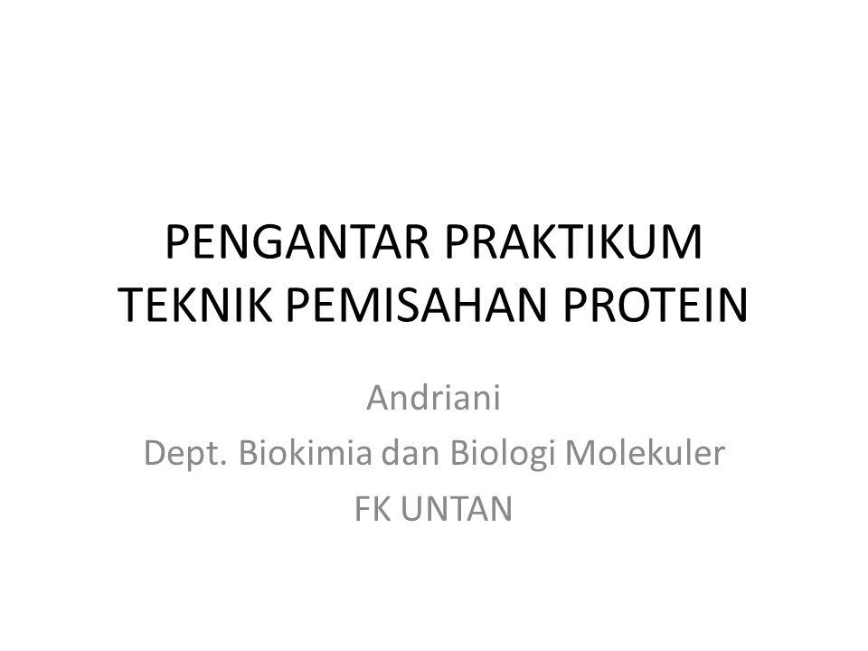 PENGANTAR PRAKTIKUM TEKNIK PEMISAHAN PROTEIN Andriani Dept. Biokimia dan Biologi Molekuler FK UNTAN