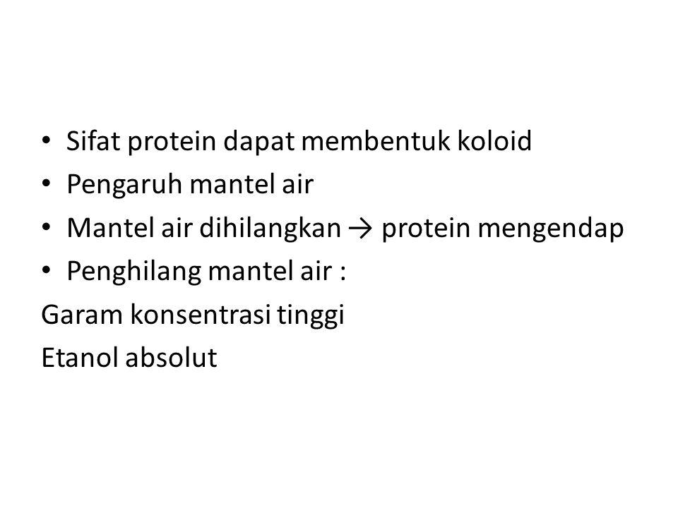 Sifat protein dapat membentuk koloid Pengaruh mantel air Mantel air dihilangkan → protein mengendap Penghilang mantel air : Garam konsentrasi tinggi Etanol absolut