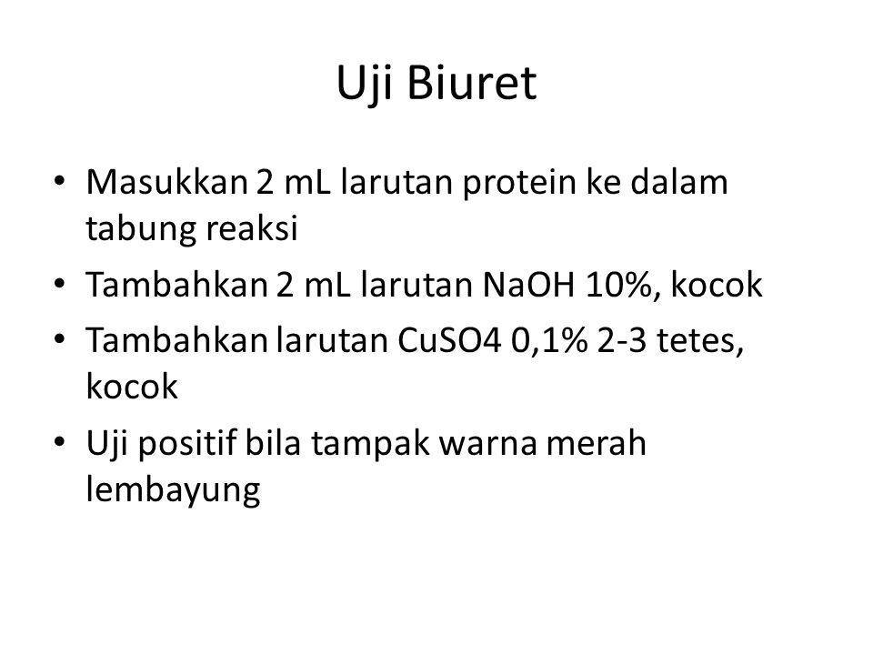 Uji Biuret Masukkan 2 mL larutan protein ke dalam tabung reaksi Tambahkan 2 mL larutan NaOH 10%, kocok Tambahkan larutan CuSO4 0,1% 2-3 tetes, kocok Uji positif bila tampak warna merah lembayung