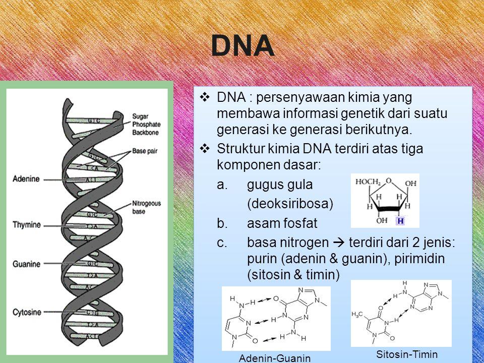  DNA : persenyawaan kimia yang membawa informasi genetik dari suatu generasi ke generasi berikutnya.