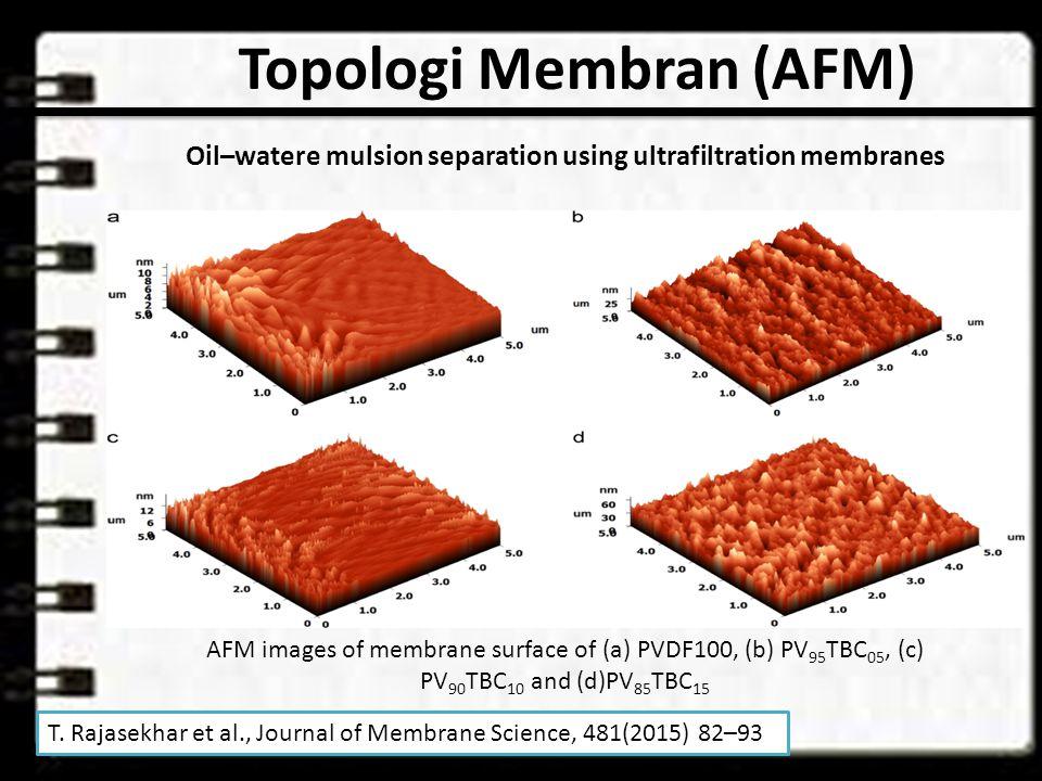 Topologi Membran (AFM) AFM images of membrane surface of (a) PVDF100, (b) PV 95 TBC 05, (c) PV 90 TBC 10 and (d)PV 85 TBC 15 T.
