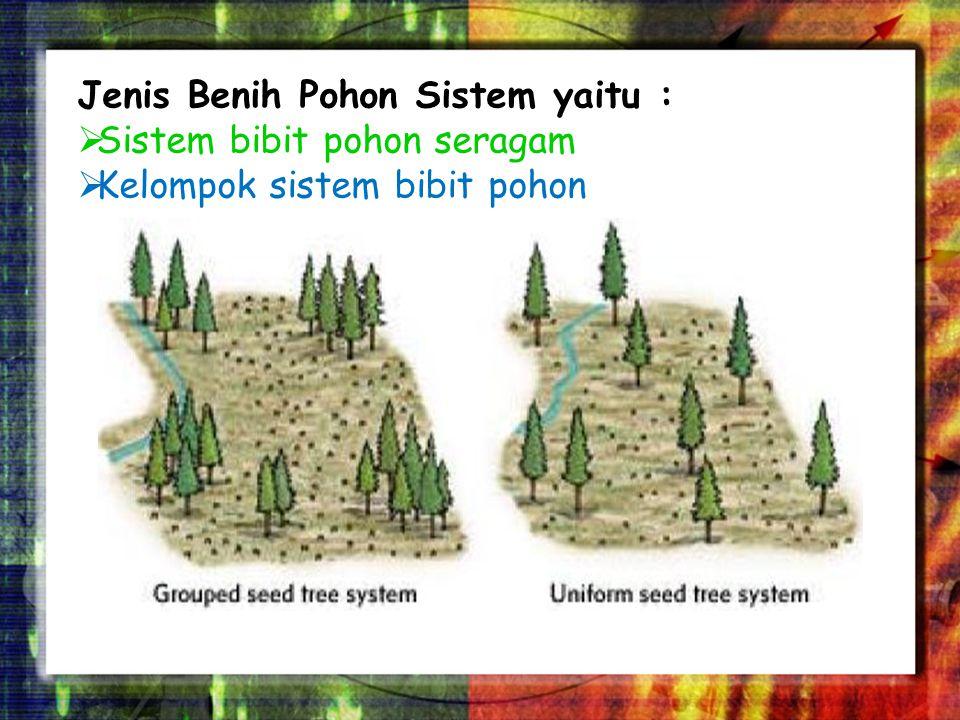 Free Powerpoint TemplatesPage 10 Dalam metode ini, berdiri adalah jelas ditebang kecuali pohon benih beberapa, yang dibiarkan berdiri sendiri atau dalam kelompok untuk menghasilkan benih untuk regenerasi.
