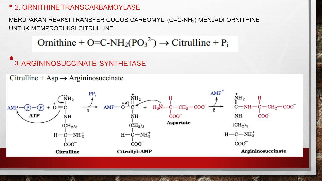 2. ORNITHINE TRANSCARBAMOYLASE MERUPAKAN REAKSI TRANSFER GUGUS CARBOMYL (O=C-NH 2 ) MENJADI ORNITHINE UNTUK MEMPRODUKSI CITRULLINE 3. ARGININOSUCCINAT