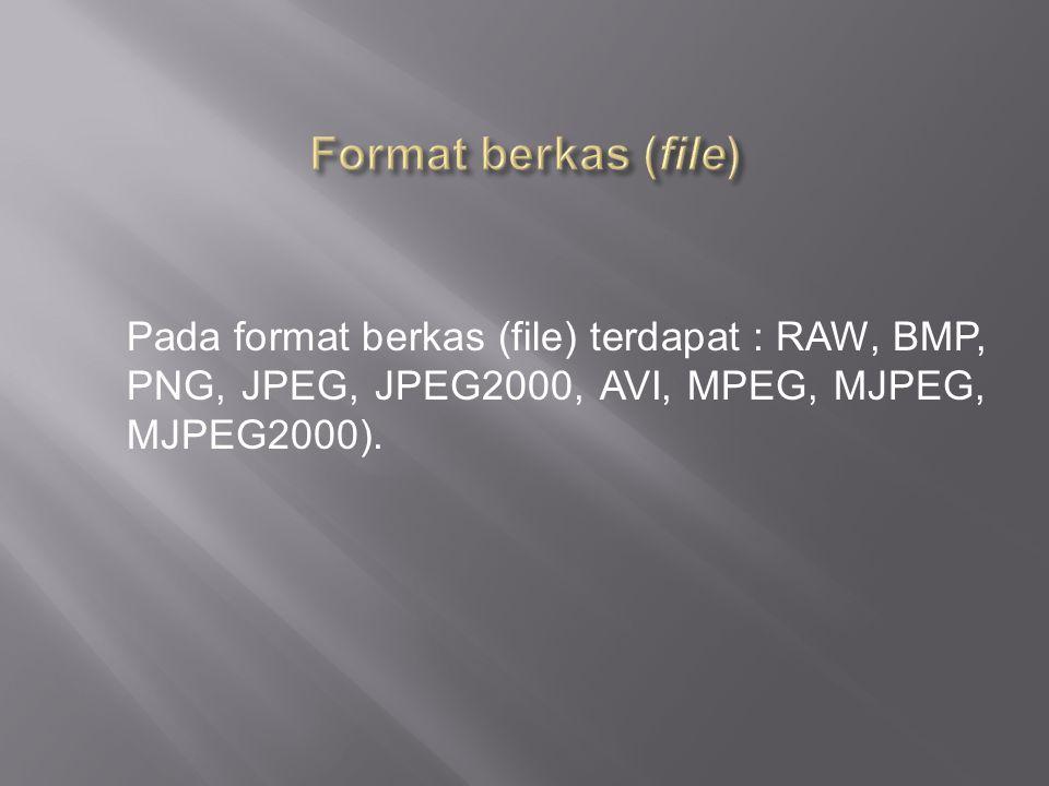Pada format berkas (file) terdapat : RAW, BMP, PNG, JPEG, JPEG2000, AVI, MPEG, MJPEG, MJPEG2000).