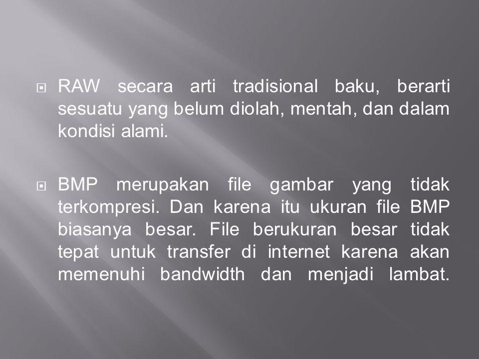  RAW secara arti tradisional baku, berarti sesuatu yang belum diolah, mentah, dan dalam kondisi alami.  BMP merupakan file gambar yang tidak terkomp