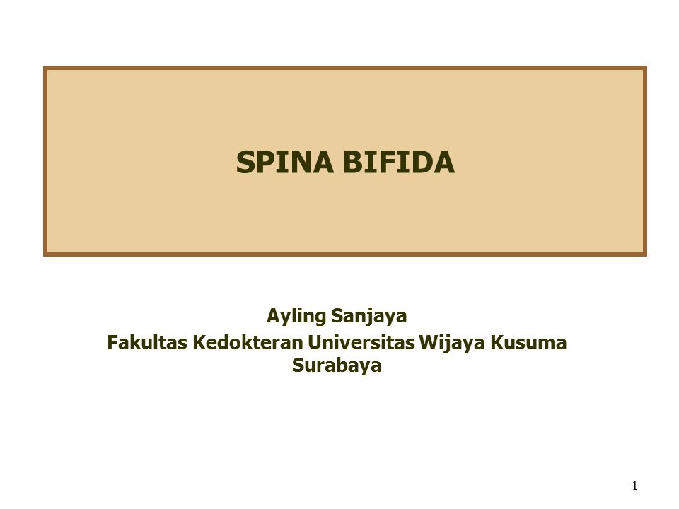 SPINA BIFIDA Ayling Sanjaya Fakultas Kedokteran Universitas Wijaya Kusuma Surabaya 1