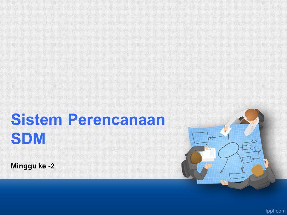 Sistem Perencanaan SDM Minggu ke -2