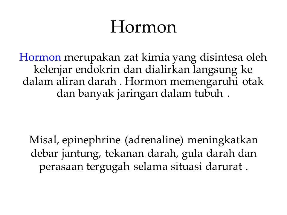 Hormon Hormon merupakan zat kimia yang disintesa oleh kelenjar endokrin dan dialirkan langsung ke dalam aliran darah. Hormon memengaruhi otak dan bany
