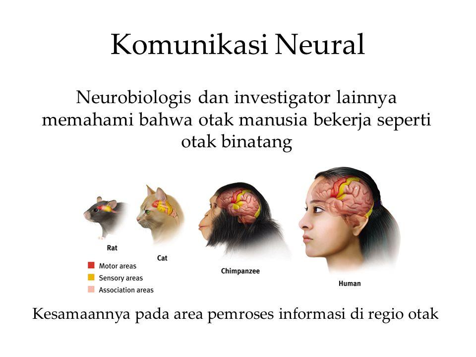 Sistem Limbik berbentuk donat, merupakan sistem neural diatas batang otak berbatasan dengan serebrum, bekerja untuk emosiseperti takut, aggresi dan dorongan untuk makanan serta seks.