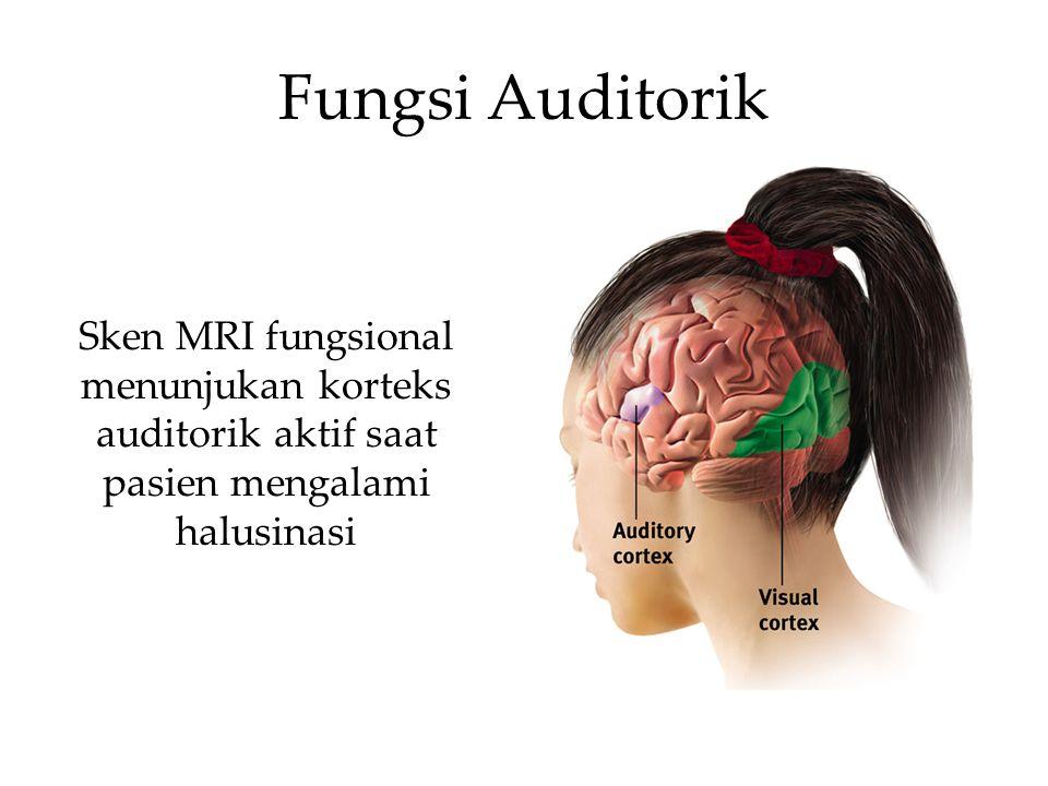 Fungsi Auditorik Sken MRI fungsional menunjukan korteks auditorik aktif saat pasien mengalami halusinasi