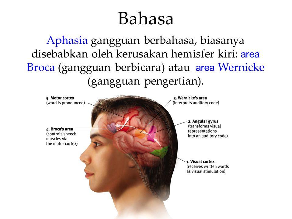 Bahasa Aphasia gangguan berbahasa, biasanya disebabkan oleh kerusakan hemisfer kiri: area Broca (gangguan berbicara) atau area Wernicke (gangguan peng