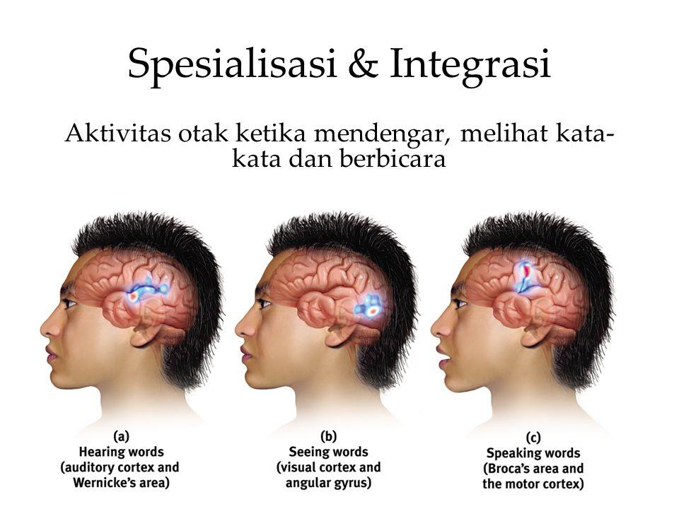 Spesialisasi & Integrasi Aktivitas otak ketika mendengar, melihat kata- kata dan berbicara