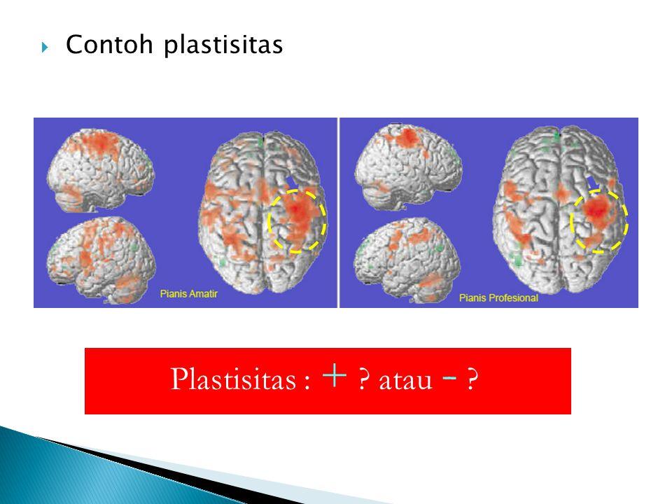  Contoh plastisitas Plastisitas : + ? atau - ?