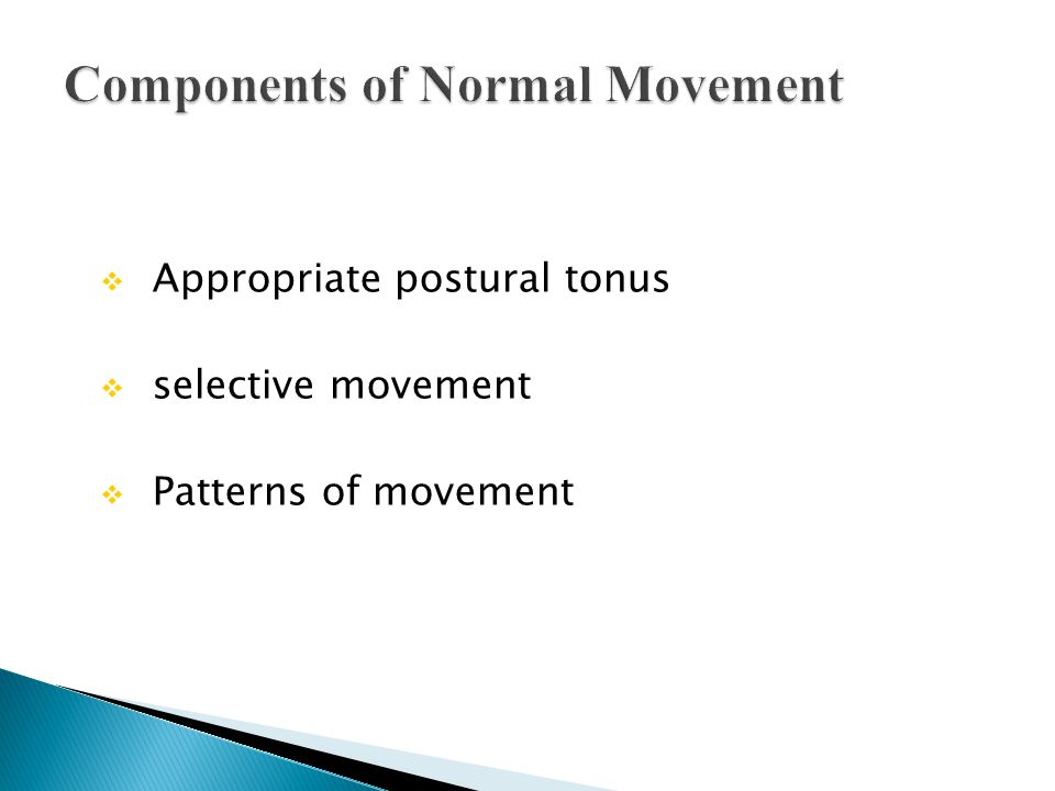  Appropriate postural tonus  selective movement  Patterns of movement