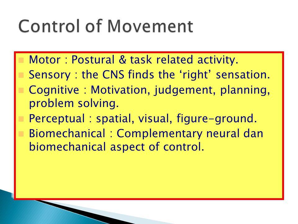Motor : Postural & task related activity. Sensory : the CNS finds the 'right' sensation. Cognitive : Motivation, judgement, planning, problem solving.