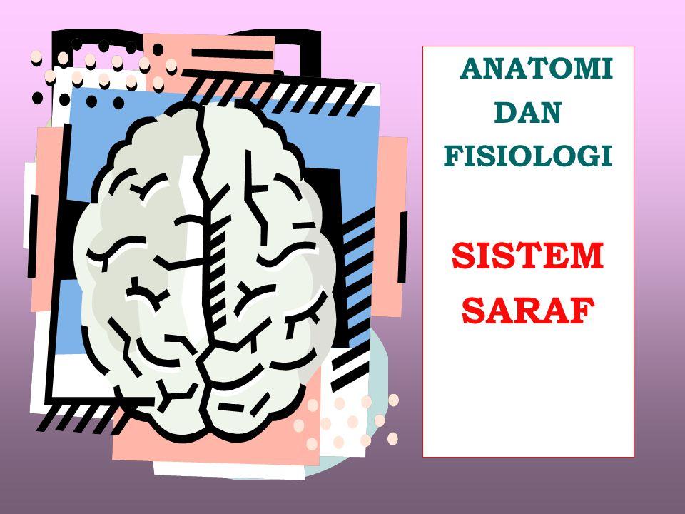 Sistem Saraf Perifer Sistem Saraf Pusat Otak & Med.