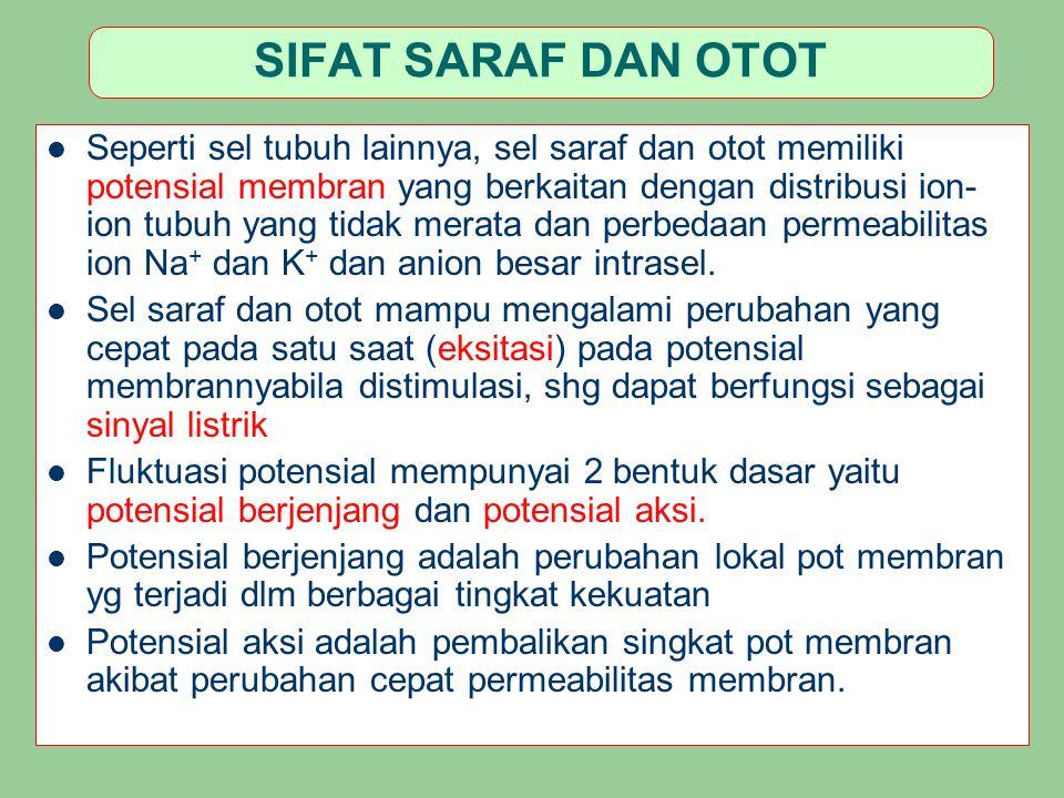 SIFAT SARAF DAN OTOT Seperti sel tubuh lainnya, sel saraf dan otot memiliki potensial membran yang berkaitan dengan distribusi ion- ion tubuh yang tid
