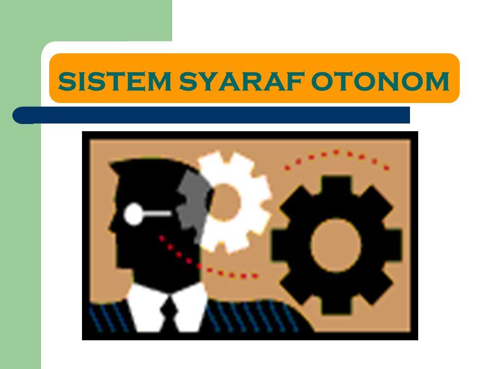 SISTEM SYARAF OTONOM