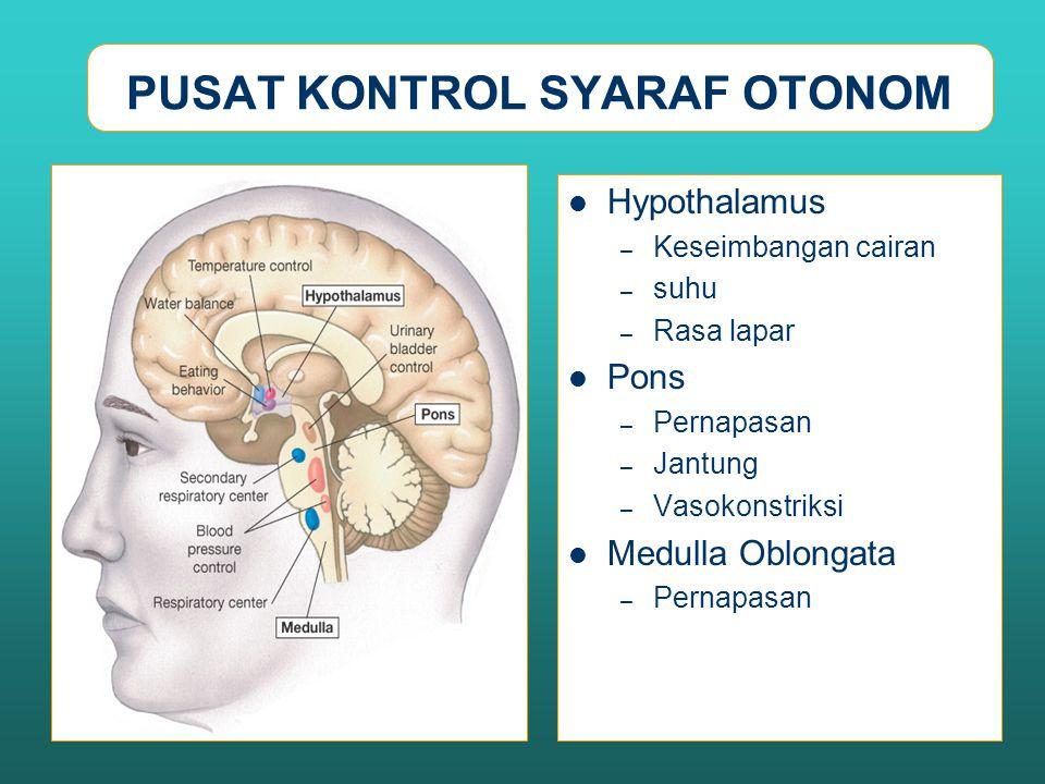 PUSAT KONTROL SYARAF OTONOM Hypothalamus – Keseimbangan cairan – suhu – Rasa lapar Pons – Pernapasan – Jantung – Vasokonstriksi Medulla Oblongata – Pe