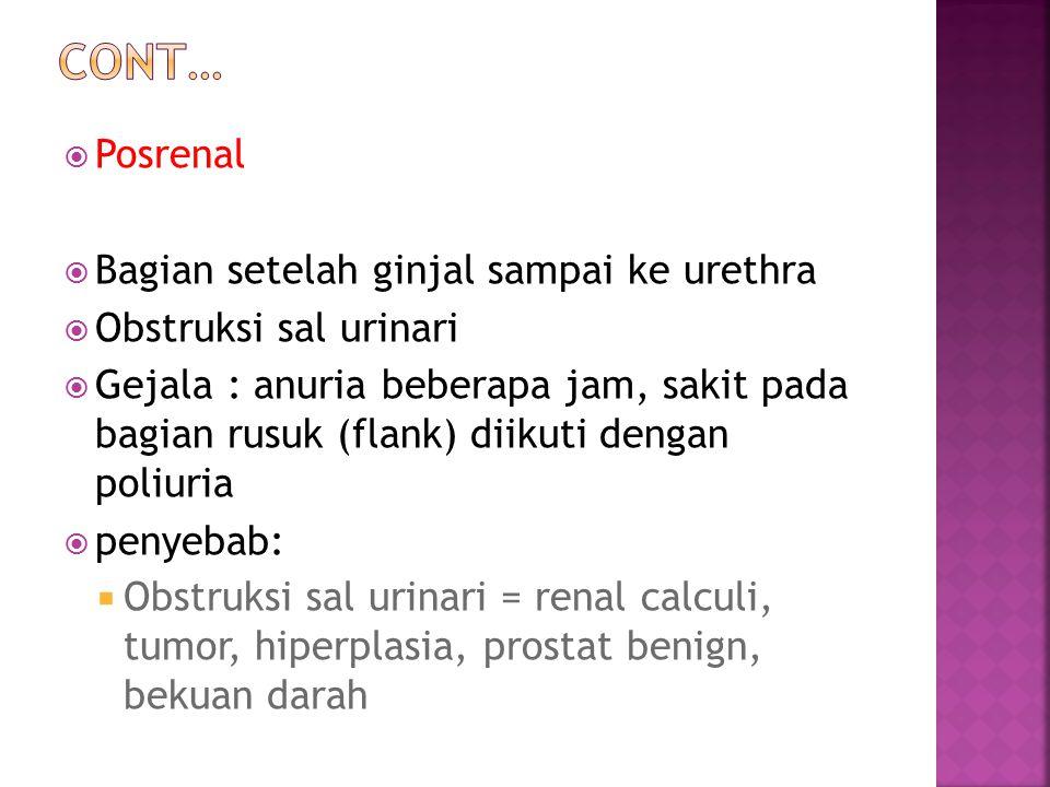  Posrenal  Bagian setelah ginjal sampai ke urethra  Obstruksi sal urinari  Gejala : anuria beberapa jam, sakit pada bagian rusuk (flank) diikuti dengan poliuria  penyebab:  Obstruksi sal urinari = renal calculi, tumor, hiperplasia, prostat benign, bekuan darah