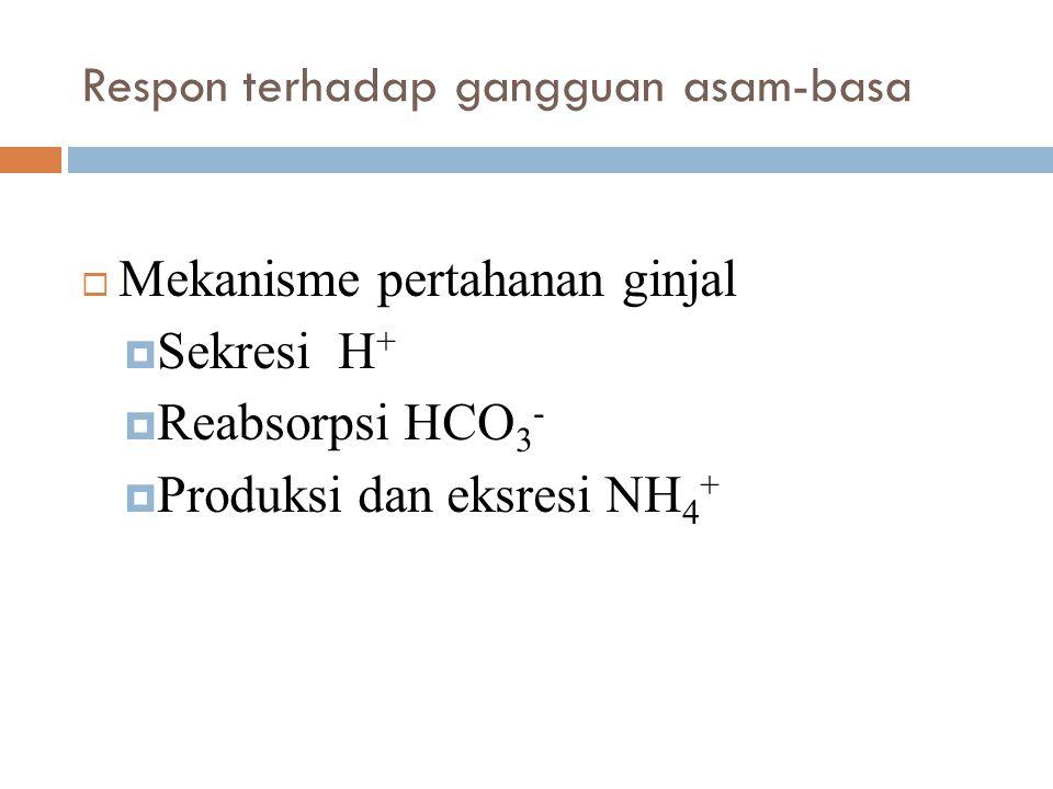 Respon terhadap gangguan asam-basa  Mekanisme pertahanan ginjal  Sekresi H +  Reabsorpsi HCO 3 -  Produksi dan eksresi NH 4 +