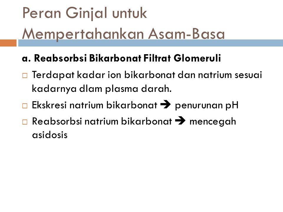 Peran Ginjal untuk Mempertahankan Asam-Basa a. Reabsorbsi Bikarbonat Filtrat Glomeruli  Terdapat kadar ion bikarbonat dan natrium sesuai kadarnya dla