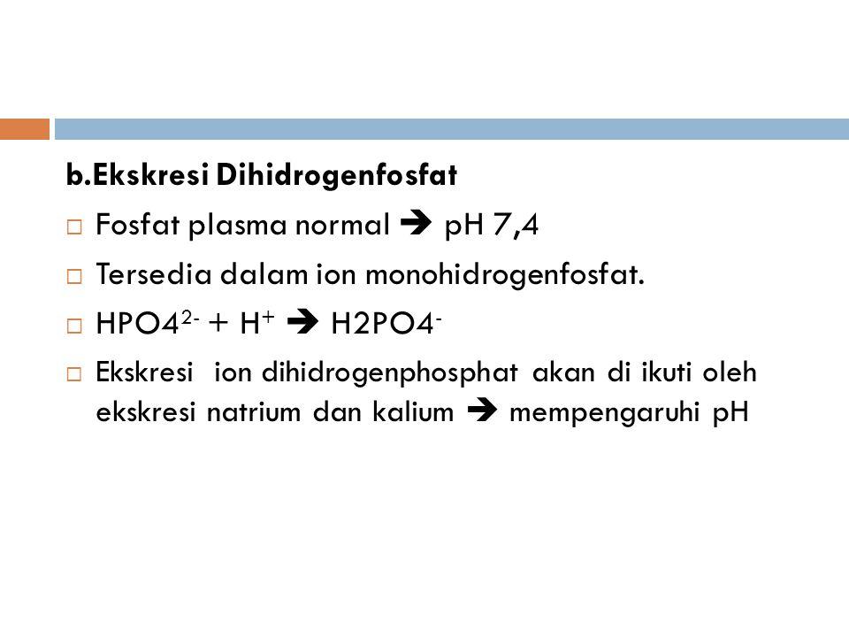 b.Ekskresi Dihidrogenfosfat  Fosfat plasma normal  pH 7,4  Tersedia dalam ion monohidrogenfosfat.  HPO4 2- + H +  H2PO4 -  Ekskresi ion dihidrog