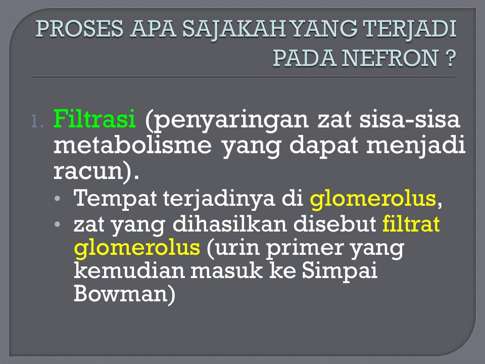 1. Filtrasi (penyaringan zat sisa-sisa metabolisme yang dapat menjadi racun). Tempat terjadinya di glomerolus, zat yang dihasilkan disebut filtrat glo