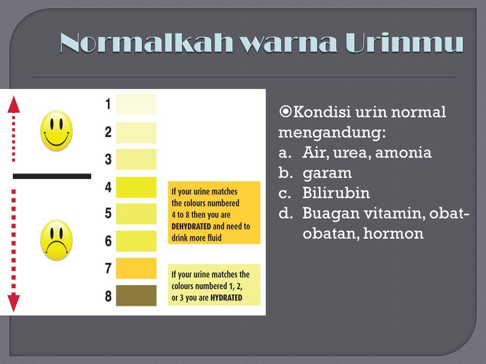  Kondisi urin normal mengandung: a.Air, urea, amonia b.garam c.Bilirubin d.Buagan vitamin, obat- obatan, hormon
