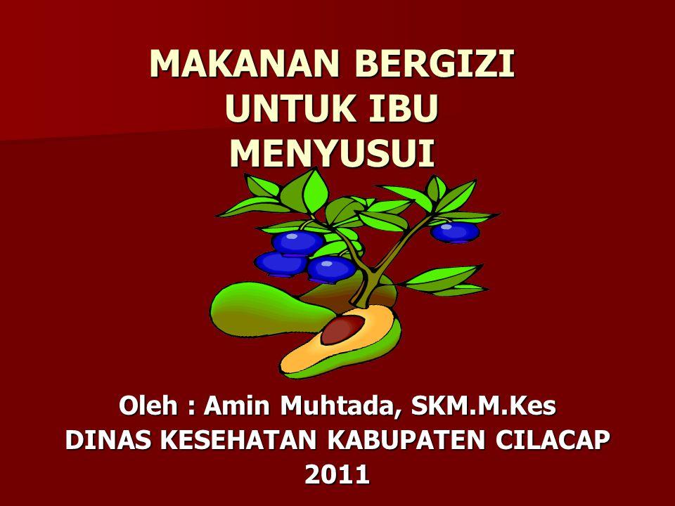 MAKANAN BERGIZI UNTUK IBU MENYUSUI Oleh : Amin Muhtada, SKM.M.Kes DINAS KESEHATAN KABUPATEN CILACAP 2011