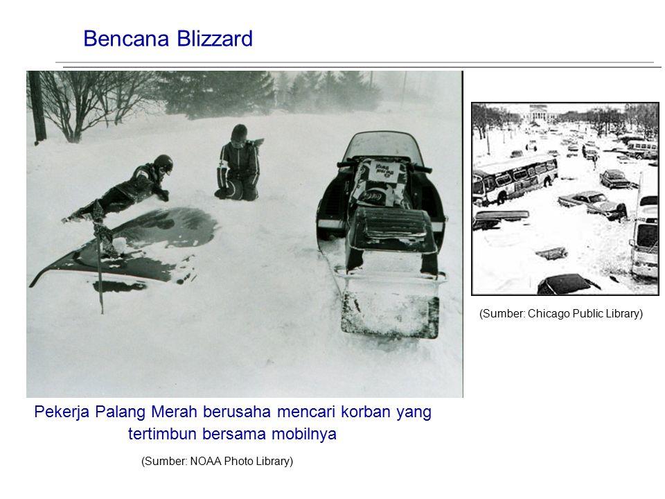 Bencana Blizzard (Sumber: NOAA Photo Library) Pekerja Palang Merah berusaha mencari korban yang tertimbun bersama mobilnya (Sumber: Chicago Public Lib