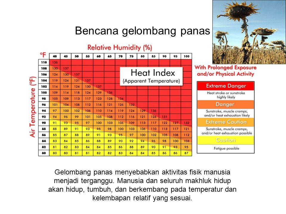 Bencana gelombang panas Gelombang panas menyebabkan aktivitas fisik manusia menjadi terganggu. Manusia dan seluruh makhluk hidup akan hidup, tumbuh, d