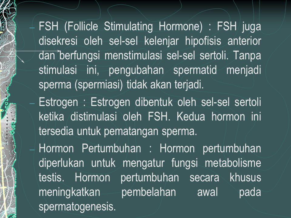 Kelenjar Ovarium Ovarium menghasilkan 2 macam hormon Hormon estrogen (hormon-hormon folikuler) dihasilkan oleh folikel de Graff Hormon progesteron  korpus luteum
