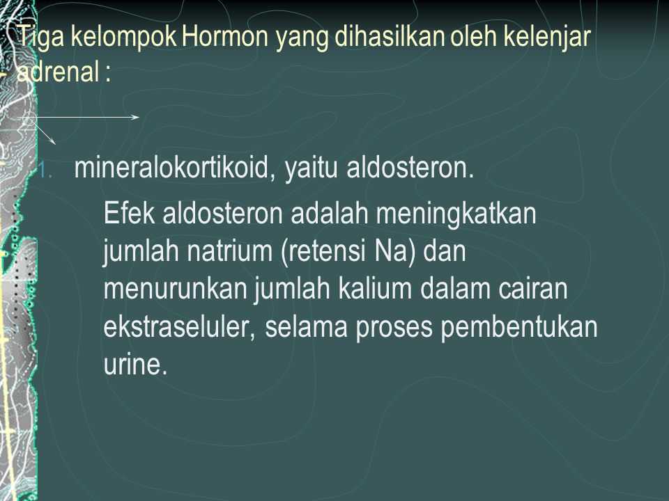 Tiga kelompok Hormon yang dihasilkan oleh kelenjar adrenal : 1.