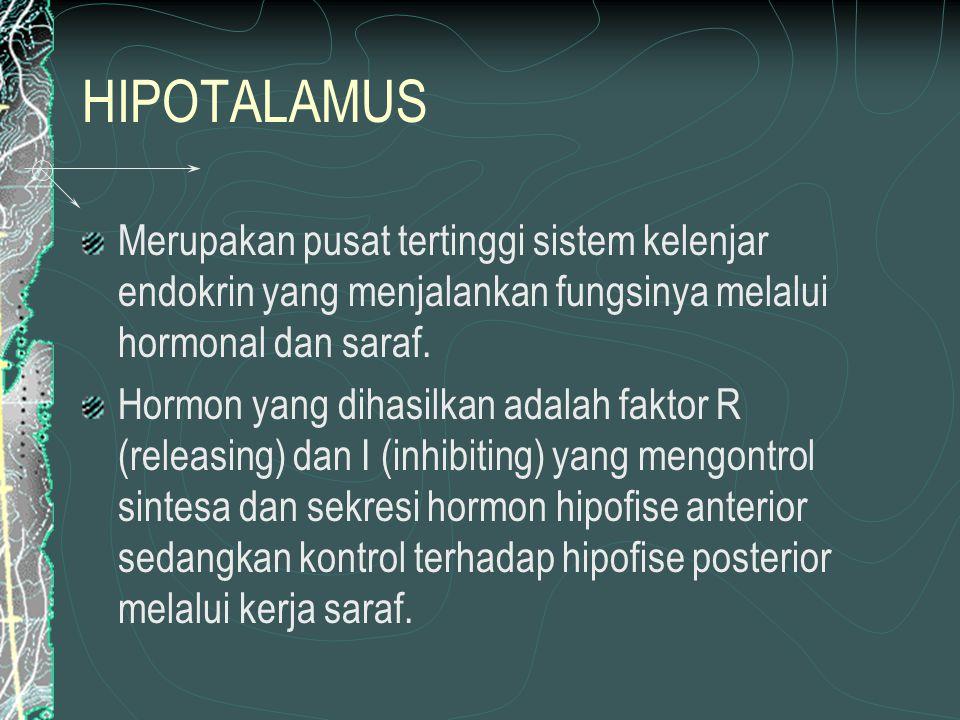 HORMON YG DIHASILKAN HIPOTALAMUS ACRH – ACIH TRH – TIH GRH – GIH GnRH -- GnIH PTRH – PTIH PRH – PIH MRH – MIH