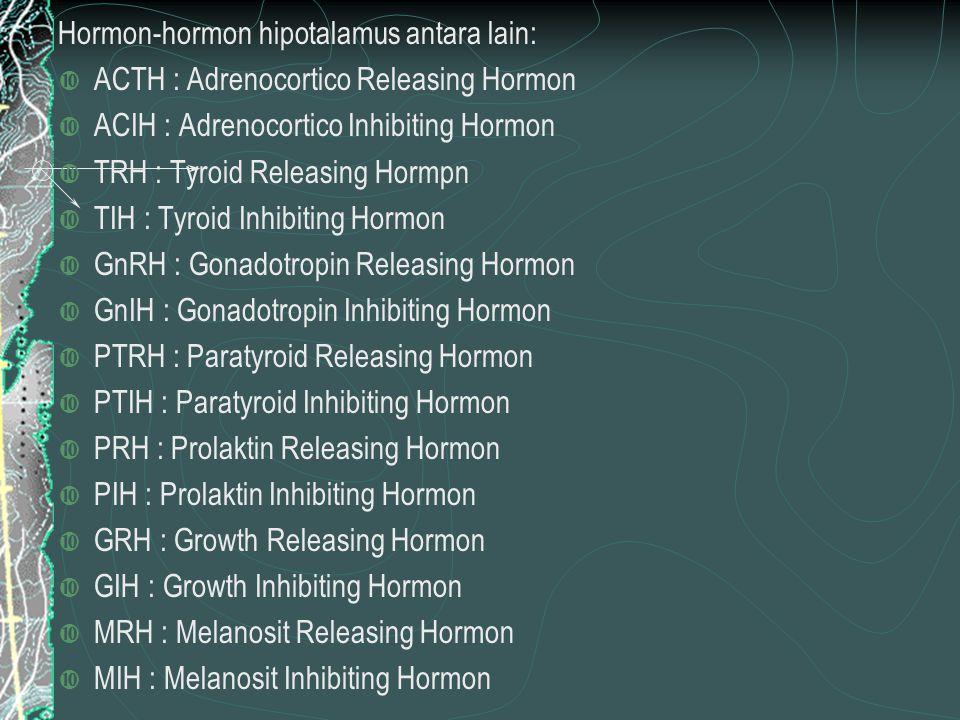 Hormon-hormon hipotalamus antara lain:  ACTH : Adrenocortico Releasing Hormon  ACIH : Adrenocortico Inhibiting Hormon  TRH : Tyroid Releasing Hormpn  TIH : Tyroid Inhibiting Hormon  GnRH : Gonadotropin Releasing Hormon  GnIH : Gonadotropin Inhibiting Hormon  PTRH : Paratyroid Releasing Hormon  PTIH : Paratyroid Inhibiting Hormon  PRH : Prolaktin Releasing Hormon  PIH : Prolaktin Inhibiting Hormon  GRH : Growth Releasing Hormon  GIH : Growth Inhibiting Hormon  MRH : Melanosit Releasing Hormon  MIH : Melanosit Inhibiting Hormon