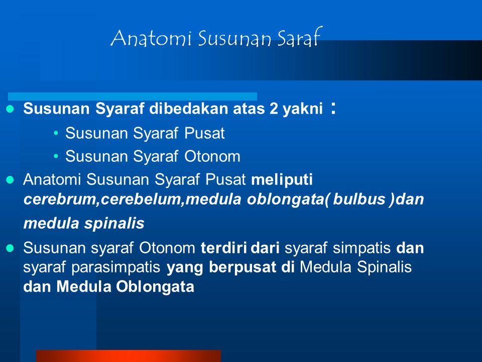 Susunan Syaraf dibedakan atas 2 yakni : Susunan Syaraf Pusat Susunan Syaraf Otonom Anatomi Susunan Syaraf Pusat meliputi cerebrum,cerebelum,medula obl