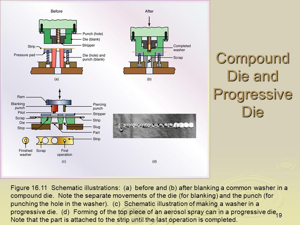 19 Compound Die and Progressive Die Figure 16.11 Schematic illustrations: (a) before and (b) after blanking a common washer in a compound die. Note th